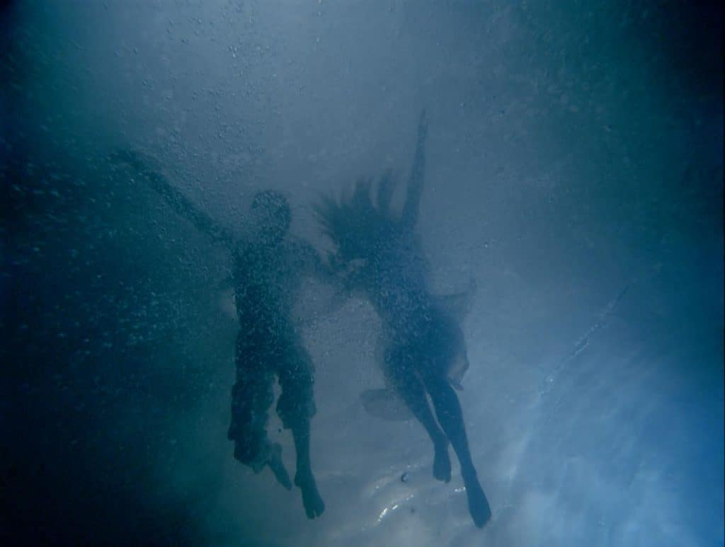 Bill Viola, Fall Into Paradise